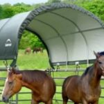 Shelter Logic Corral Shelter 12′ x 12′, $379 and 10′ x 10′, $329 (Stocked Product)